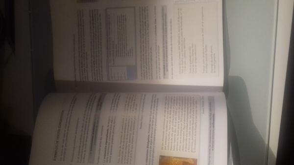 Lengua castellana y literatura ED.MCGRAWHILL
