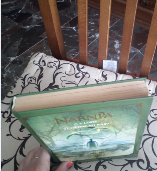 Las Crónicas de Narnia: el sobrino del mago
