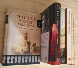 5 libros de Matilde Asensi