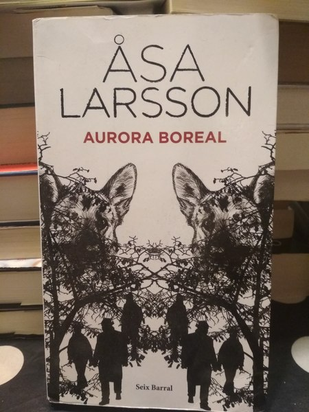 Aurora boreal, de Asa Larsson