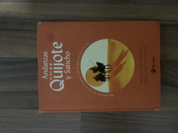 Andanzas de Don Quijtote y Sancho